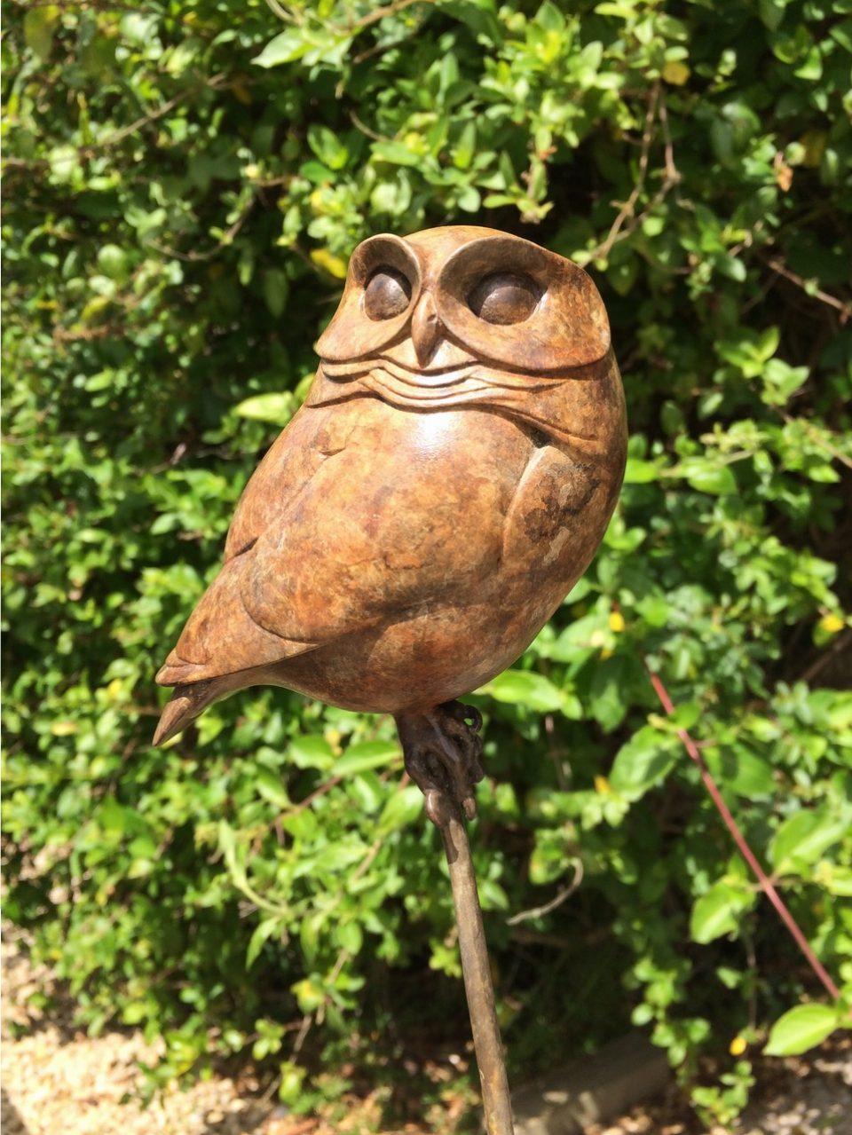 Bronze Little Owl