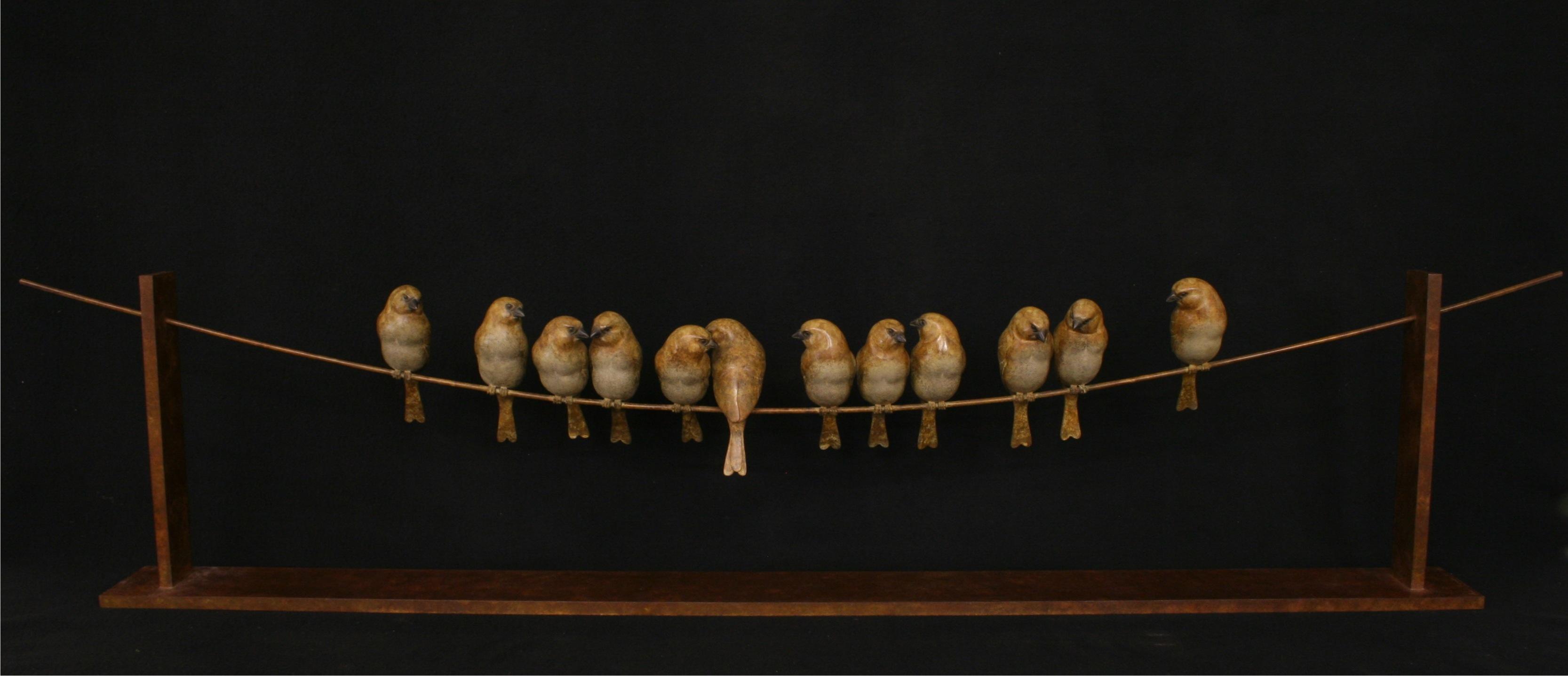 12 Sparrows