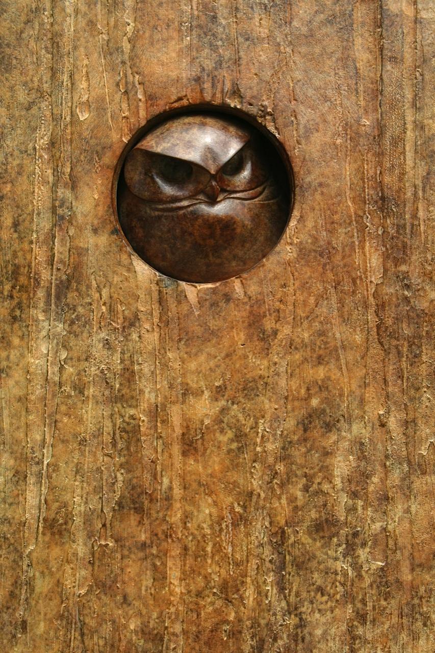Little Owl Plaque