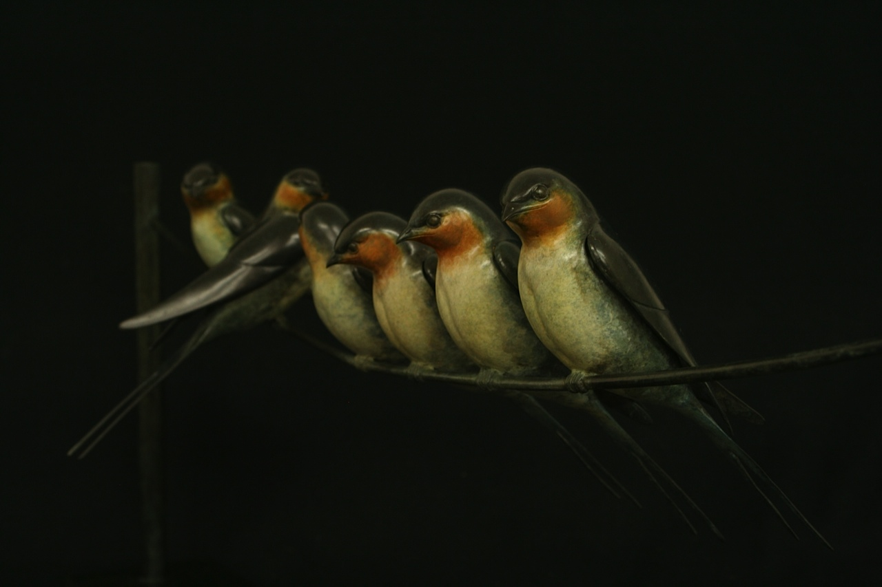 Bronze Swallows