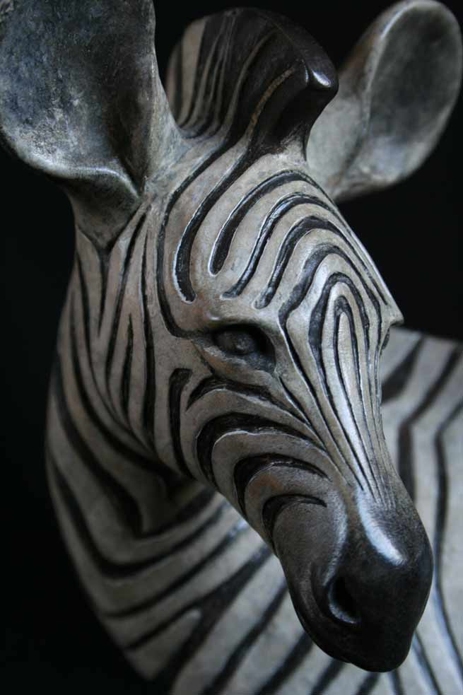 Zebra Foal Head