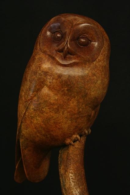 New Tawny Owl