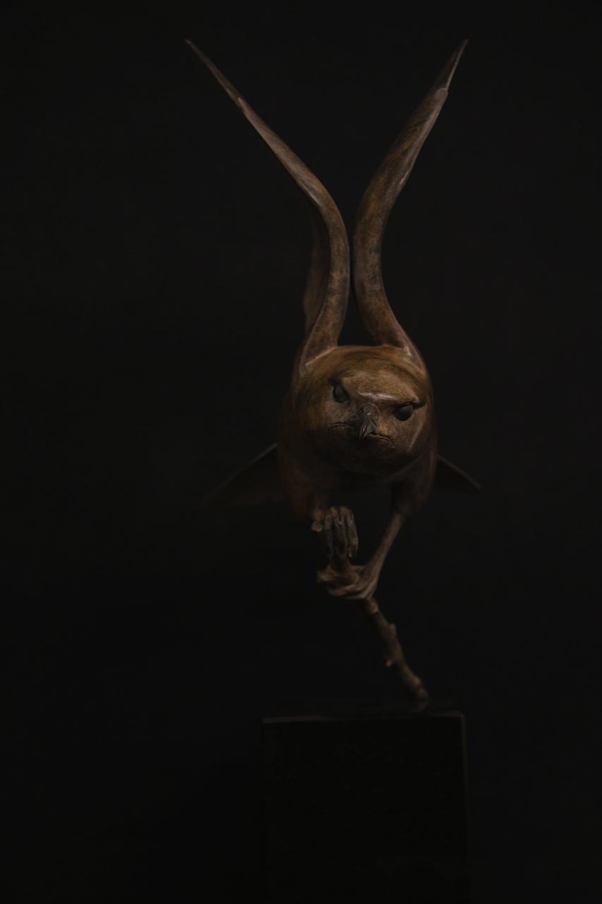 Bronze Merlin