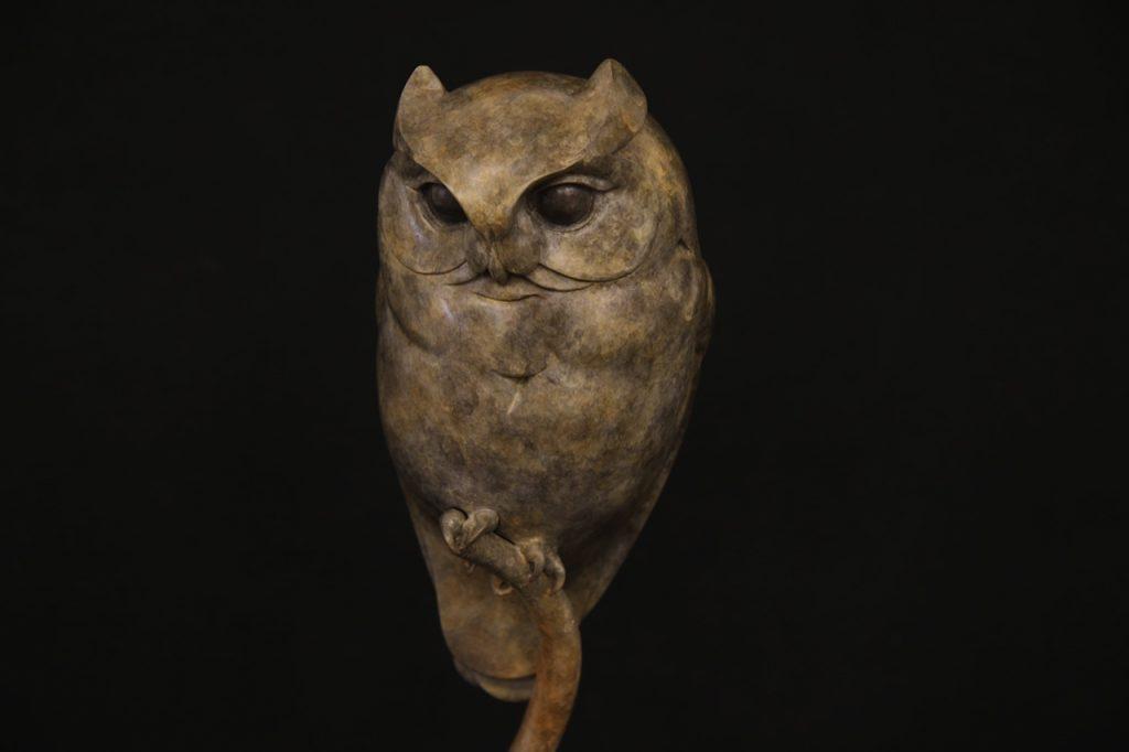 Bronze Scops Owl