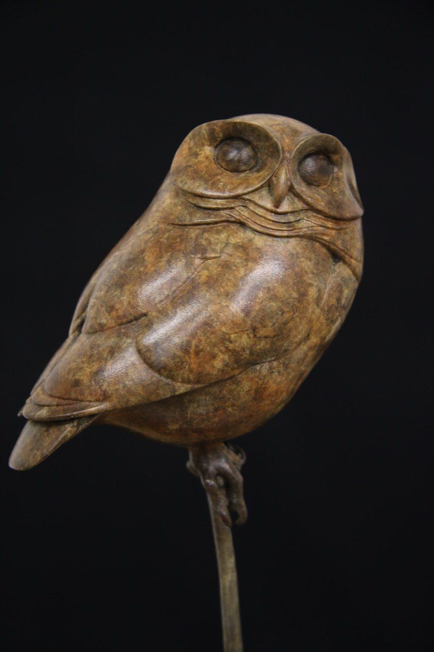 Bronze Little Owl | Adam Binder Sculptures