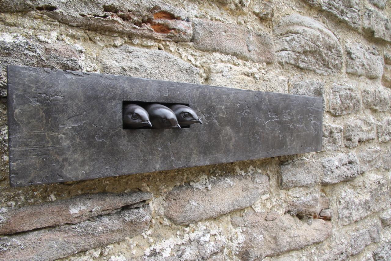 Bronze Swifts