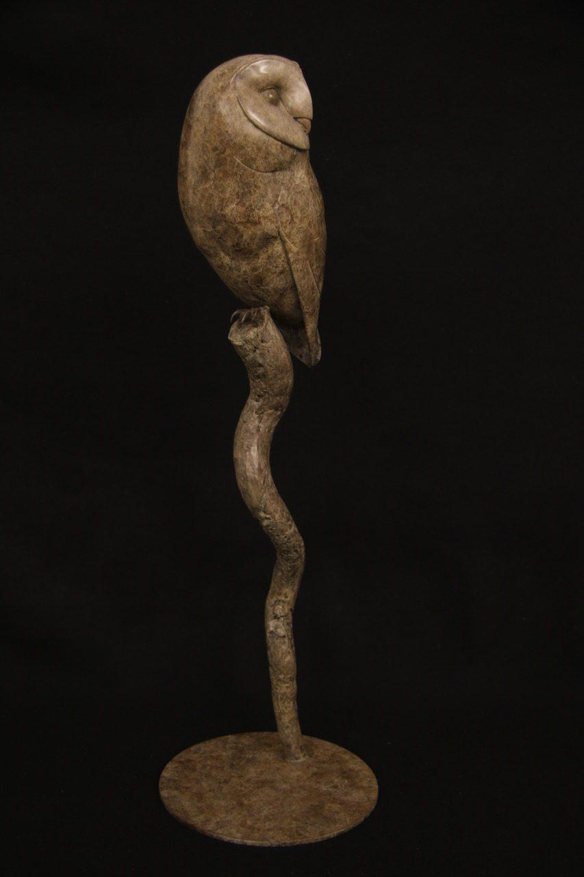 Bronze Barn Owl