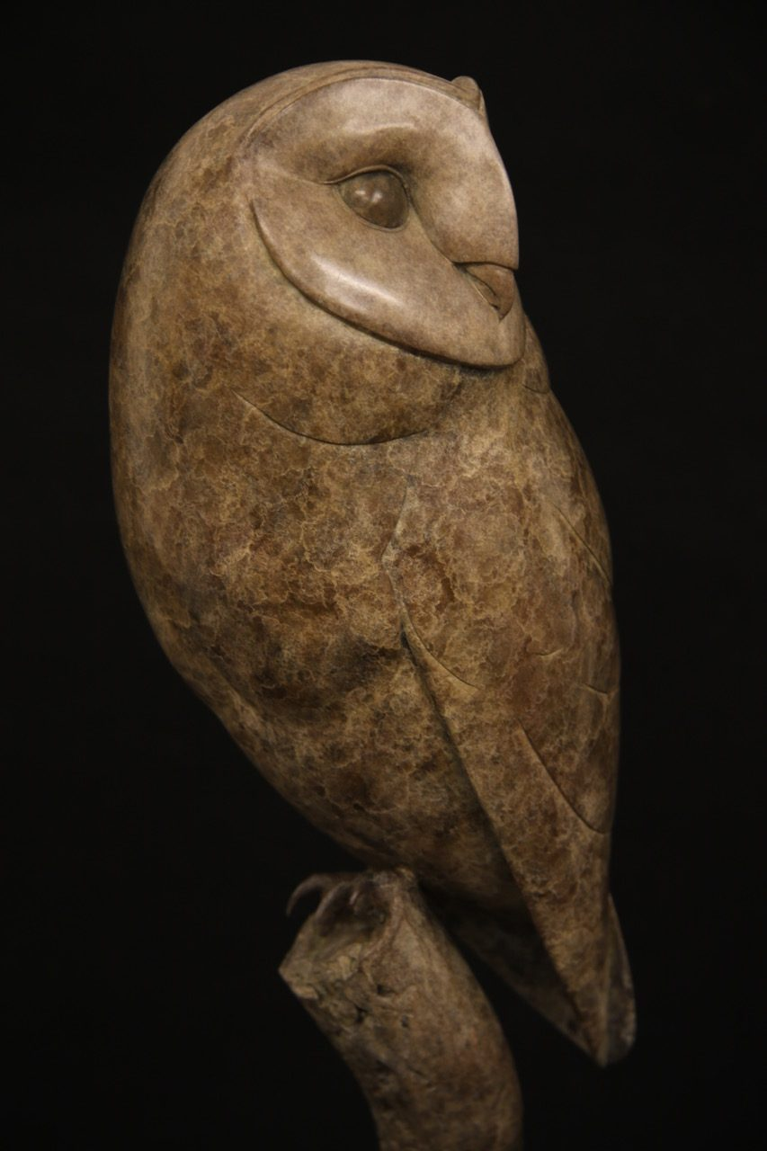 Bronze Barn Owl