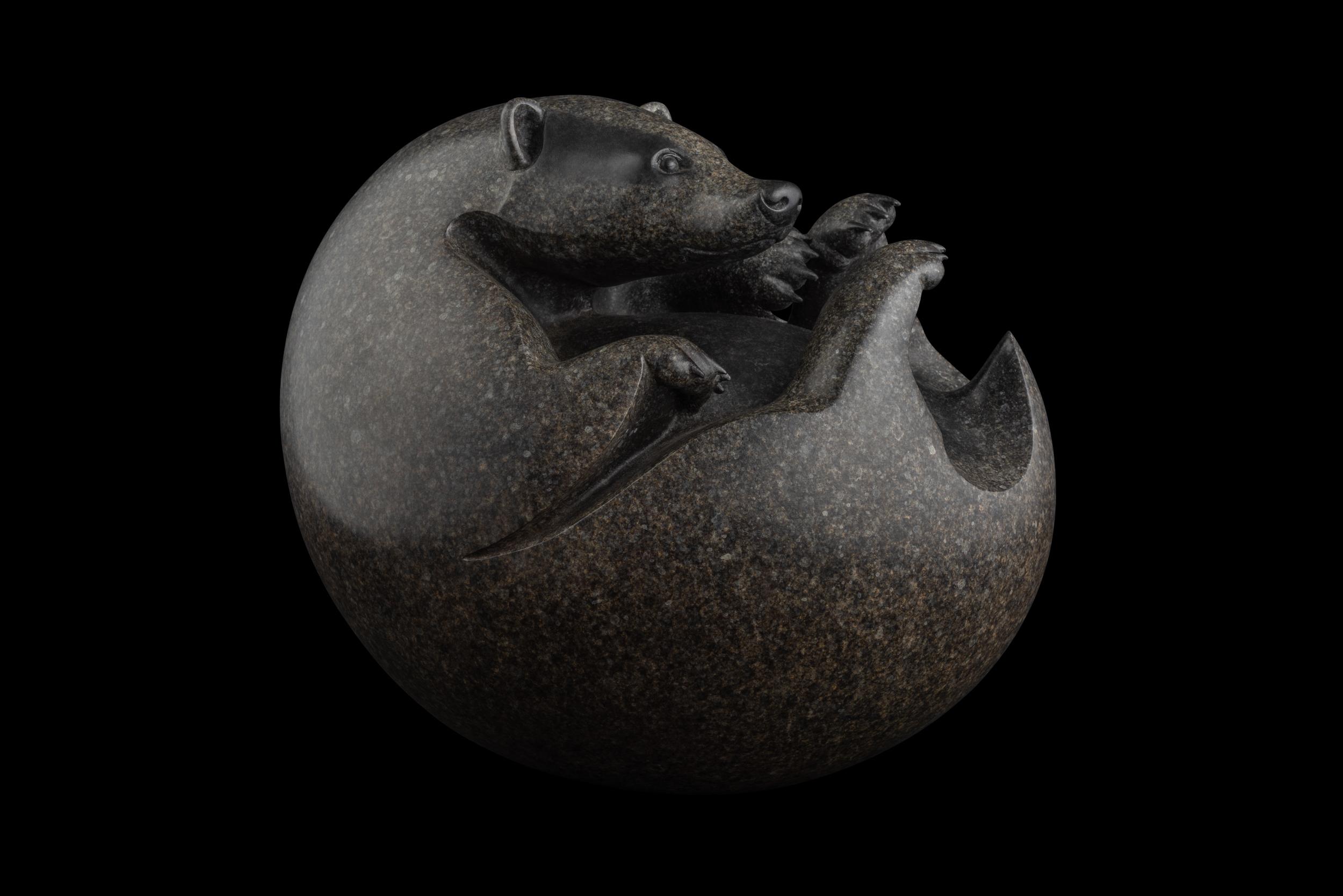 Bronze Badger