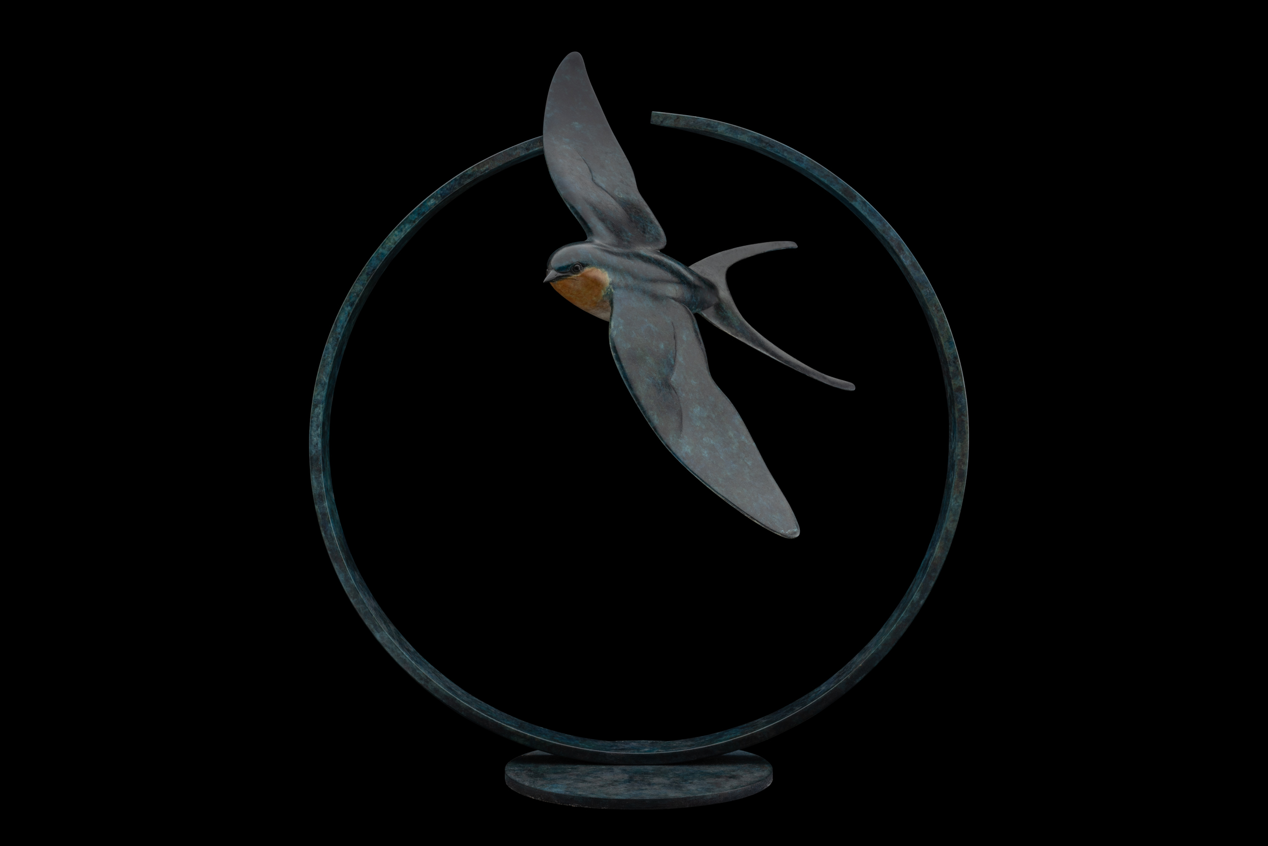 Bronze Swallow