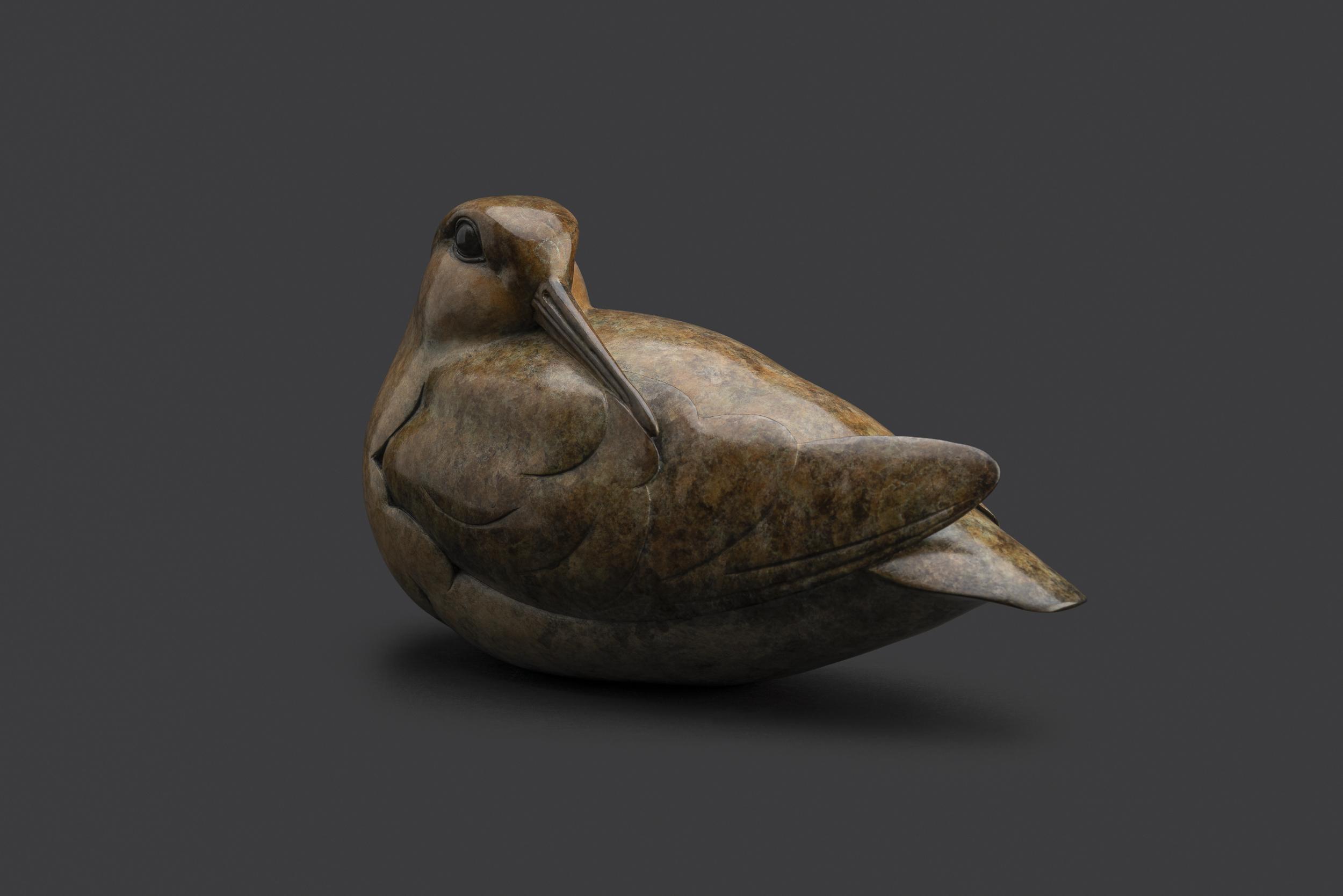 Bronze Woodcock